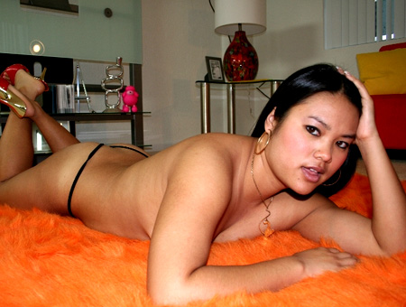 Asian House Guest